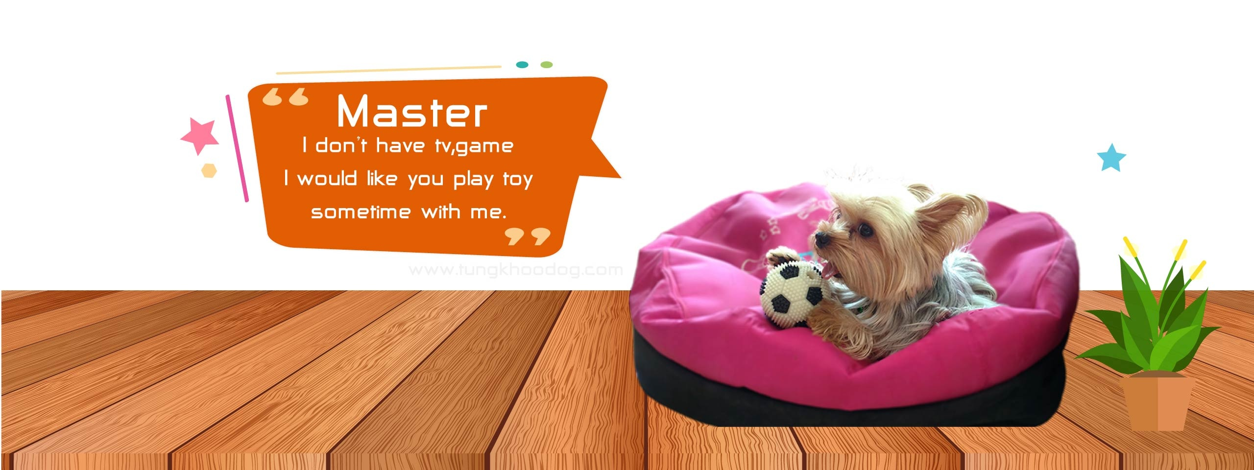 Master I don't have tv,game,chat. I would like you play toy sometime with me.